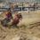 Il Supermarecross sbarca a Roccella Jonica. Bertuccelli e Mancuso favoriti per i titoli MX1 ed MX2